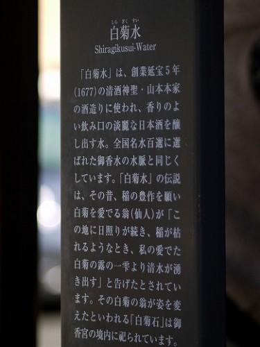 P1100788a