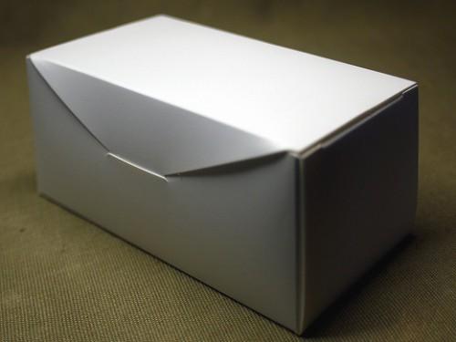 P1110047a
