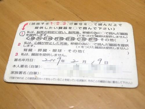 P1370859a